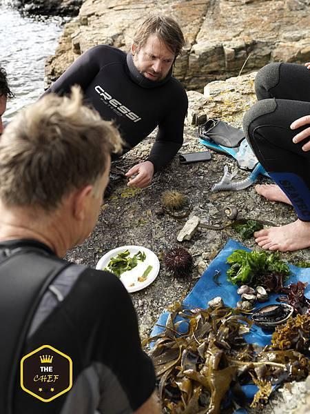 The Noma Australia team seaweed diving in Tasmania - Image by Jason Loucas.jpg