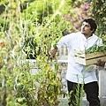 Mauro's garden credit@ Matteo Carassale.jpg