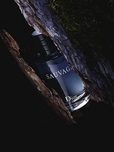 2015 Sauvage形象圖_4
