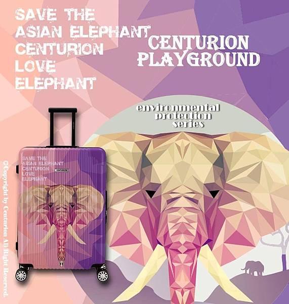 C78亞洲象