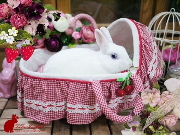 20121218草莓睡床-02