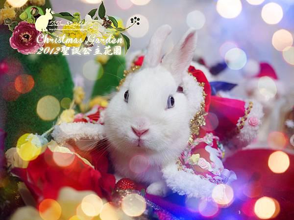 20121223聖誕公主花園-01