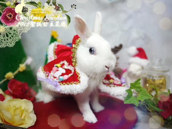 20121223聖誕公主花園-08