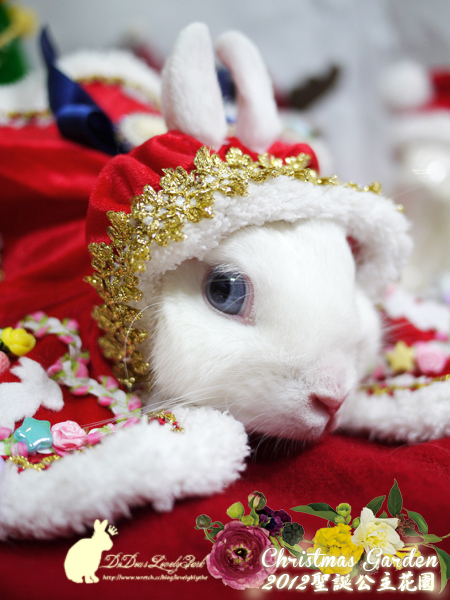 20121223聖誕公主花園-05