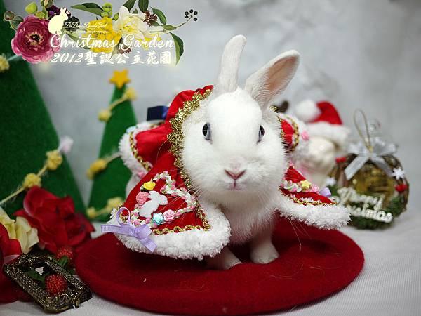 20121223聖誕公主花園-11