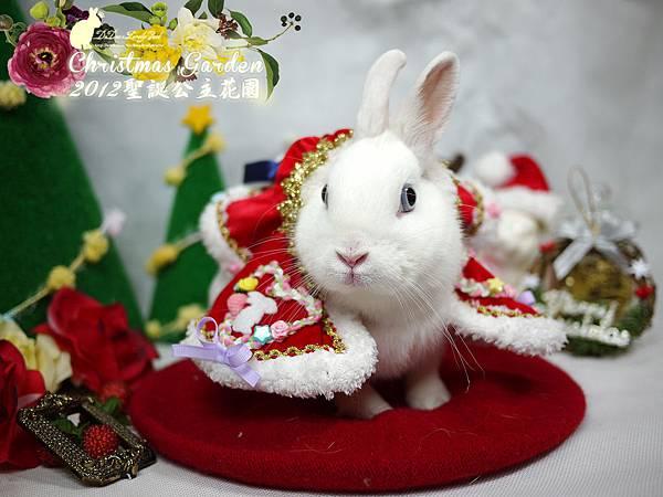 20121223聖誕公主花園-12