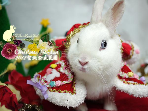 20121223聖誕公主花園-13