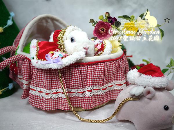 20121223聖誕公主花園-17