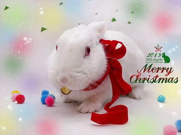 2013聖誕湯圓-13.jpg
