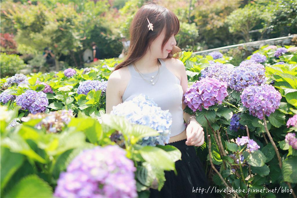 PM7A7421_meitu_5.jpg