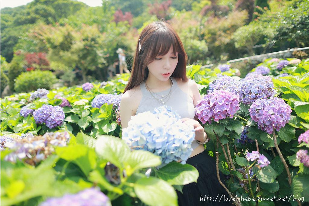 PM7A7423_meitu_6.jpg