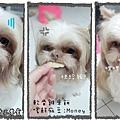 G3-軟骨雞米餅2