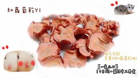 Y1-紅蘿蔔乾