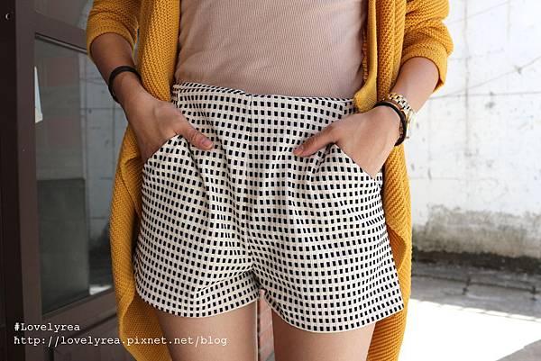 格褲 (10)