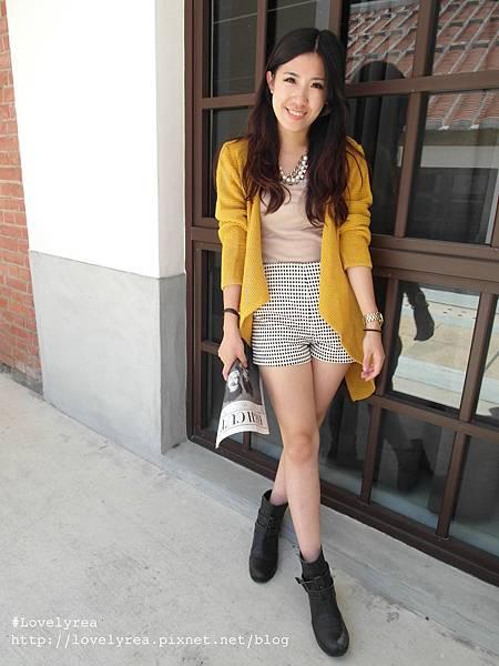格褲 (14)