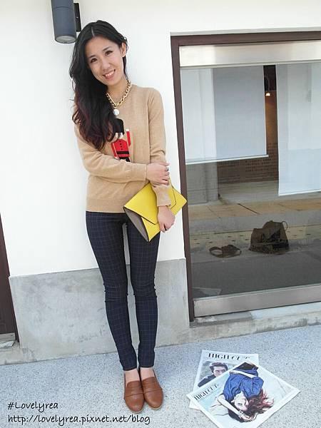 格褲 (15)