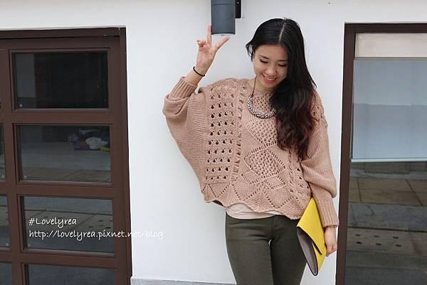 杏毛衣 (3)