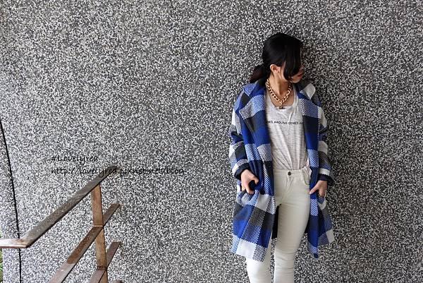 格-藍 (9)