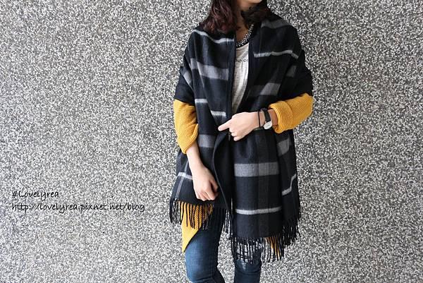 圍巾 (16)