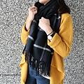 圍巾 (17)