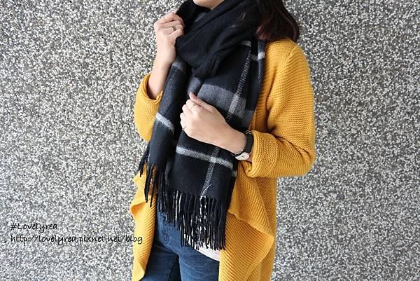 圍巾 (18)