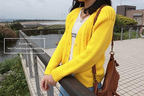 黃外套 (1)