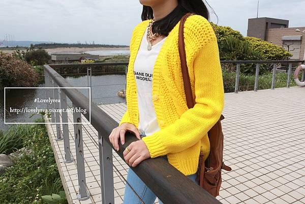 黃外套 (2)