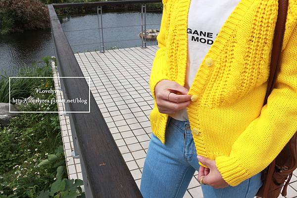 黃外套 (4)