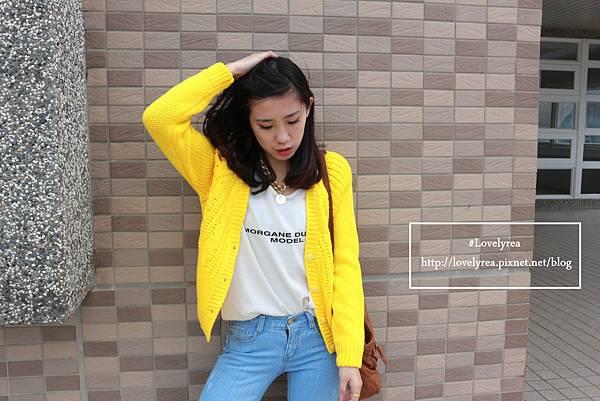黃外套 (6)