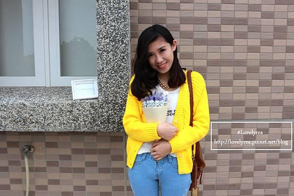 黃外套 (8)