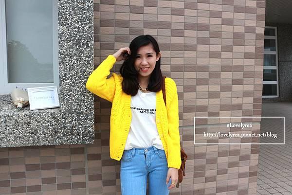 黃外套 (9)