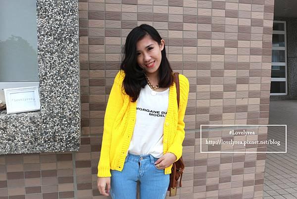 黃外套 (10)