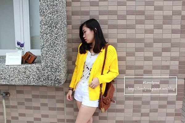 黃外套 (13)
