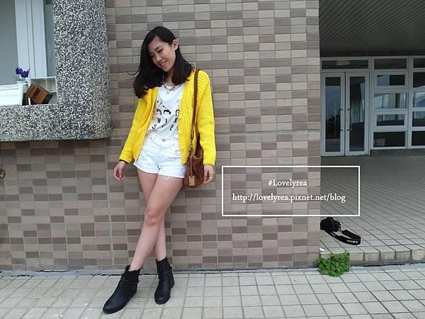 黃外套 (17)
