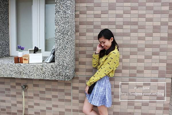線條裙 (3)