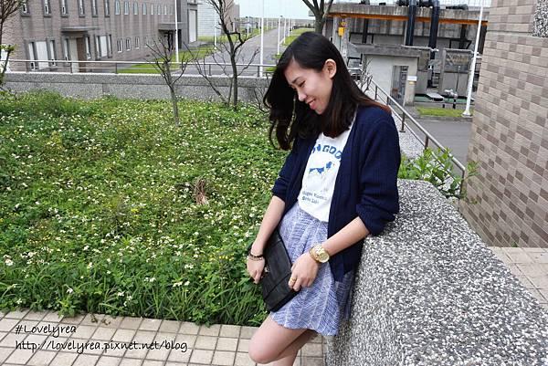 線條裙 (5)