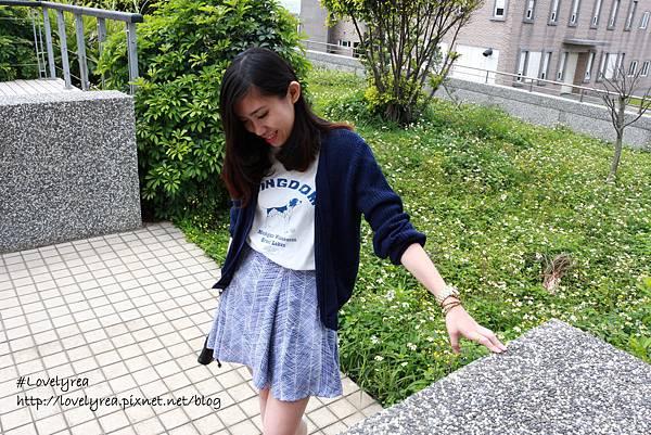 線條裙 (6)