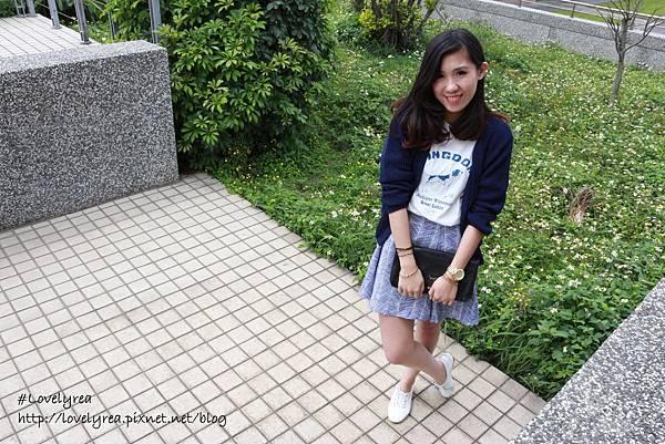線條裙 (7)