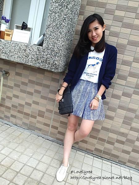 線條裙 (17)