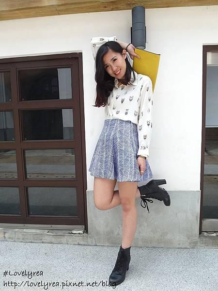 線條裙 (21)