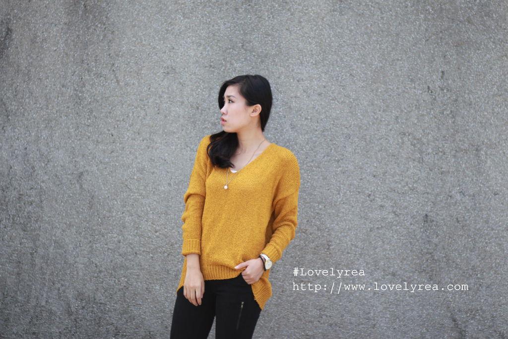 毛-黃 (6)
