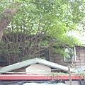 日式房子.JPG