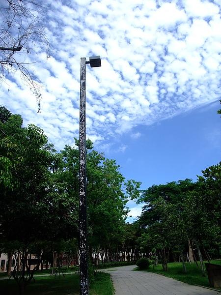 DSCF8311-1.jpg