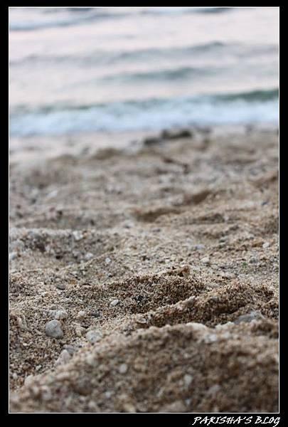 沙子.JPG