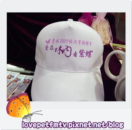 紫斑蝶5更新.jpg