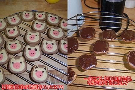 小豬餅乾 Sep242011