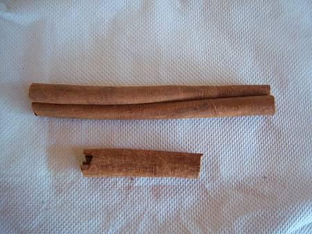 肉桂皮 (cinnamon bark)