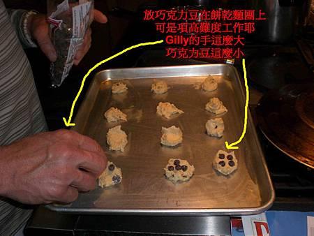 20091113chocolate cookies