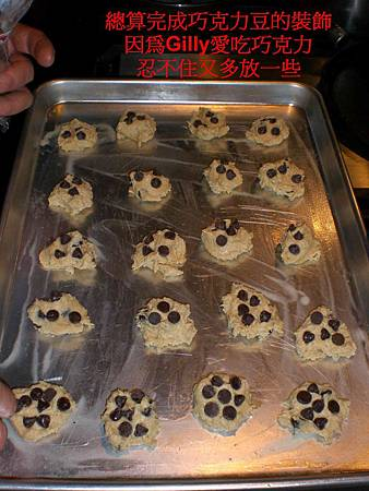 20091113chocolate cookies-1