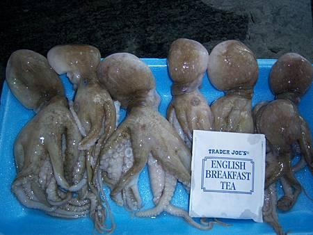 Jan232012 小章魚與紅茶包